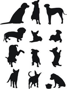 dog silhouette shadow breeds