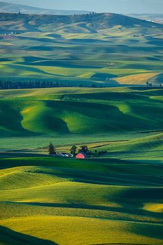 Palouse, Washington - breathtaking beauty... When I first saw pictures of Palouse, I thought it must be outside of the US, for some reason, I was thinking England or Scotland, but no... this is right in our own backyard...