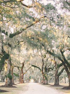 Fenwick Hall in South Carolina
