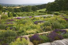 Yorkshire garden | Tom Stuart-Smith. Tapestry planting when viewed from house.