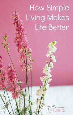 How Simple Living Makes Life Better | Embracing a Simpler Life