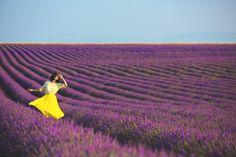 Gorgeous Nicole Warne of Gary Pepper Girl in a stunning shot by Luke Shadbolt. Lavender fields, France.