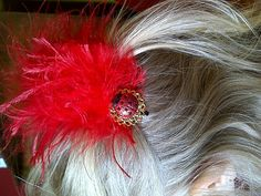 red feather and ladybug hair clip by ladybugladyjjjsalon on Etsy, $8.48
