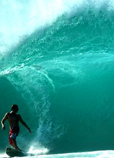 looking back / Andy Irons