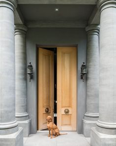 Grand entry | Anouska Hempel Design