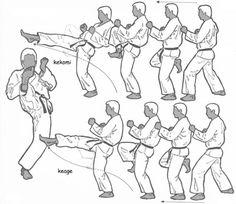Judo, Karate Do, Shotokan Karate Kata, Parkour, Marshal Arts, Self Defense Martial Arts, Kyokushin, Ju Jitsu, Martial Arts Techniques
