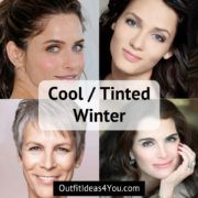 Cool Winter / Tinted Winter Seasonal Color Analysis