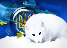 Моя политика: ЖЕСТЬ. Украина: ВСЕ решения украинской Хунты НЕЗАК...