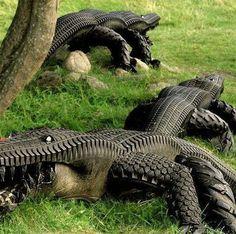 Tire Alligators