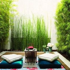 Calm your senses and be motivated to work on your own mini paradise