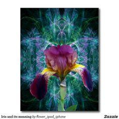 Iris and fractal art postcard
