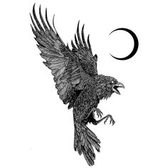 Discover recipes, home ideas, style inspiration and other ideas to try. Nature Tattoos, Body Art Tattoos, Sleeve Tattoos, Crow Tattoos, Phoenix Tattoos, Ear Tattoos, Tatoos, Crow Tattoo For Men, Raven Tattoo