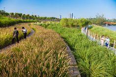 10-yanweizhou-terrace « Landscape Architecture Works | Landezine