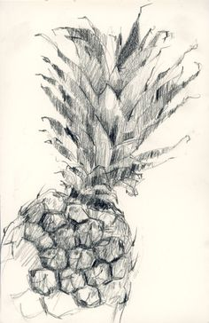 Like a pineapple, carry a crown. Sketch Journal, Sketchbook Pages, Pen Sketch, Art Sketches, Pineapple Sketch, Pineapple Art, Pencil Art, Pencil Drawings, My Drawings