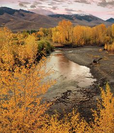 ✮ Idaho - the Big Lost River in Autumn at Sunset