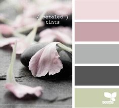 {Petaled Tints} by Design Seeds color palette. Design Seeds, Color Concept, Color Palate, Kitchen Colors, Bathroom Colors, Bathroom Grey, Kitchen Grey, Bathroom Ideas, Kitchen Paint