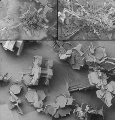 Snowflakes under an electron microscope...wow!