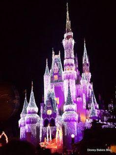Walt Disney World at Christmastime