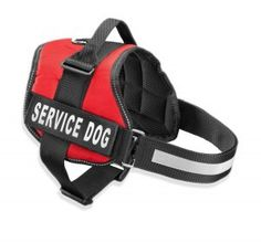 Harnesses for Working Dogs