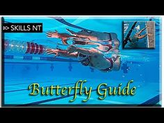 Improve your Butterfly swimming Stages) technique for beginners - Top-Trends Breaststroke Swimming, Swimming Drills, Swimming Tips, Swimming Diving, Baby Swimming, Competitive Swimming, Sea Diving, How To Swim Faster, Swimmers