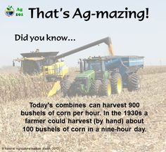 Picking corn has changed over the years