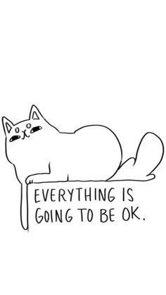 Everything is going to be ok.