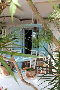 www.ingebruins.com - our ibiza holiday - la paloma Ibiza Holidays, Plants, Room, Inspiration, Homes, Bedroom, Biblical Inspiration, Rooms, Plant
