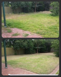 Lawn Mowing, Edging, Weeding, Trimming and General Tidy.  What can Trusted do for you?