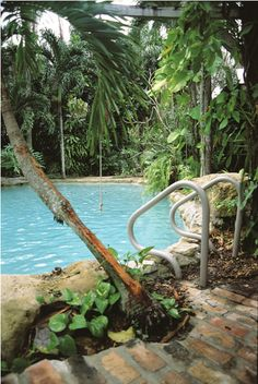 Tropical setting for lagoon-style pool by SwimmingPool Pics, via Flickr
