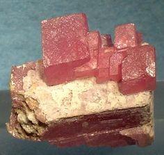 Rodocrosita, da mina Sunnyside, em Howardsville, distrito de Silverton, condado de San Juan, Colorado, USA. Tamanho: 2,7 x 2,7 x 1,4 centímetros. Um conjunto muito bonito de brilhantes e translúcidos losangos de Rodocrosita no topo de uma maior, coberta de cristal de calcita, vermelho-rosa. Coleção de John Ydren. Fotografia: