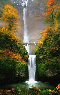 Multnomah Falls is a waterfall located in the Columbia River Gorge, east of Troutdale, between Corbett and Dodson, Oregon, United States. The waterfall is accessible from the Historic Columbia River Highway and Interstate Beautiful Waterfalls, Beautiful Landscapes, Beautiful World, Beautiful Places, Landscape Photography, Nature Photography, Nature Pictures, Amazing Nature, Pretty Pictures