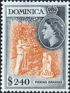 Dominica 1954 Queen Elizabeth II SG 149 Fine Used Scott Other Dominican Stamps HERE