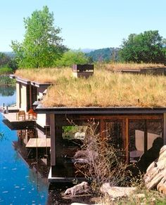 Living Roof Lake House