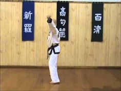 ▶ Hand Technique Drill for #MartialArt students focusing on #TangSooDo techniques.  Developed by Master Scott C. Homschek of River Valley Tang Soo Do Academy, LLC.   Hand Technique Drill for #MartialArt students focusing on #TangSooDo techniques.  Developed by Master Scott C. Homschek of River Valley Tang Soo Do Academy, LLC.   This video is sequence #5 of 8.    Visit us at http://www.rvtsda.com or www.facebook.com/RiverValleyTangSooDo