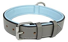 Soft Touch Collars  Padded Leather Dog Collar Large Gray and Blue  Handmade Genuine Real Leather ** Check this awesome product by going to the affiliate link Amazon.com at the image.