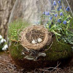 Precious terrarium from Terrain for the Spring/Easter season.