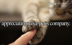 Appreciating your pet's company.