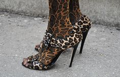 Trending: Animal print on animal print  ZsaZsa Bellagio: STREET STYLE
