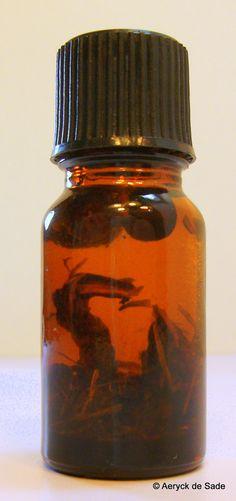 Money Now Money Drawing Oil 10ml Hoodoo Rootwork by AeryckdeSade, $4.00