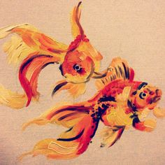 color, couple gold fish, Fish, koi fish, two golden fish