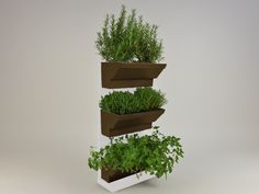 Indoor Herb walls a solution to grow herbs in tidied and spectacular conditions in your kitchen or at your garden. Using fresh and living herbs not only good for healthy and tasty foods but for healthcare and home cosmetics, like facemask or herbal teas. http://goo.gl/o42bOF Details: white frame white table brown plant's box 45×60 cm / 17,7×23,6 inches easy to fit water holder system