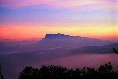 Mount Trus Madi, Borneo Rainforest
