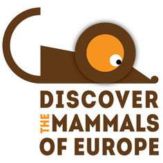 Discover the mammals of Europe is a campaign aiming at supporting people and organisations working on mammal conservation and research in Europe. Conservation, Mammals, Gq, Campaign, Europe, People, Organizations, People Illustration, Folk