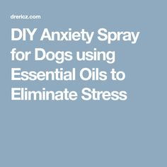 DIY Anxiety Spray for Dogs using Essential Oils to Eliminate Stress Dog Anxiety, Anxiety Tips, Anxiety Help, Stress And Anxiety, Essential Oils Dogs, Doterra Essential Oils, Young Living Essential Oils, Essential Oil Blends, Oils For Dogs