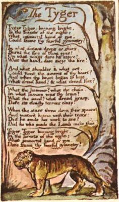 """""""Tyger! Tyger! burning bright   In the forests of the night,    What immortal hand or eye   Could frame thy fearful symmetry?""""  by #WilliamBlake"""