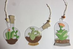 Bocce di vetro per piante grasse 1