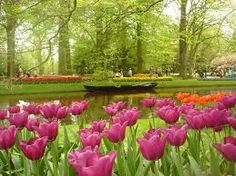 Keukenhof Gardens- It is very famous tourist attraction located in Netherlands. It is very beautiful place having more than 70,000 types of flowers. For more visit: http://www.touristerworld.com/2014/03/08/keukenhof-gardens/