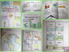 MORE Interactive Science Notebook Templates $