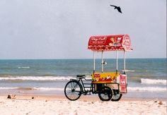 crow beach food cart food on wheels pin neat stuff