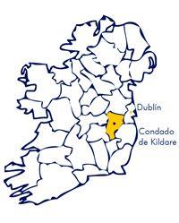 Cursos de inglés en Irlanda. Condado de Kildare. Mapa